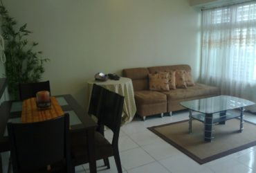 ONE BEDROOM FULLY FURNISHED – FORT BONIFACIO SERENDRA