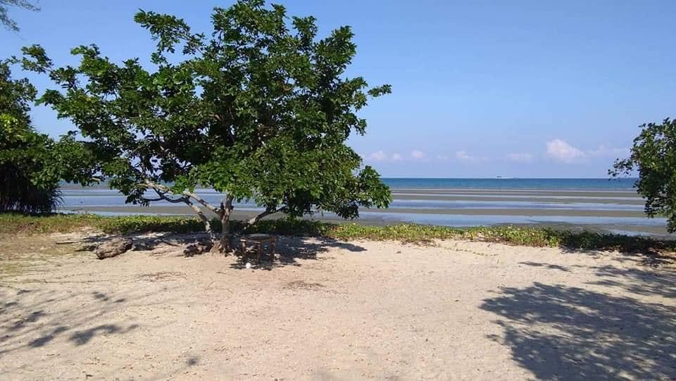 Beach Lot Facing (Honda Bay) Islands