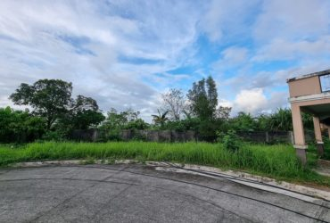 AFFORDABLE LOT ONLY IN PALO LEYTE