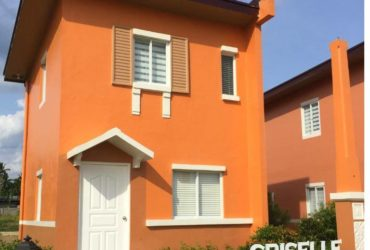AFFORDABLE HOUSE AND LOT FOR SALE IN BACOLOD CITY